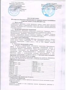 Бал.район Положение по лыжым гонкам 15.12.18